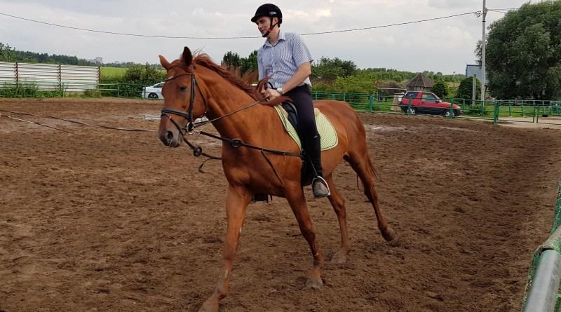 Управление лошадью : кнопка 1