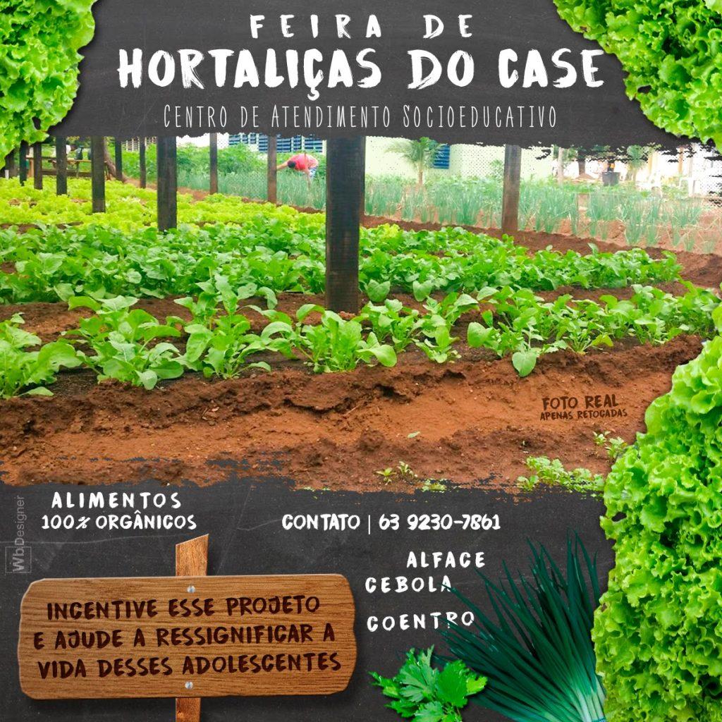 Case de Palmas realiza 1ª Feira de Hortaliças