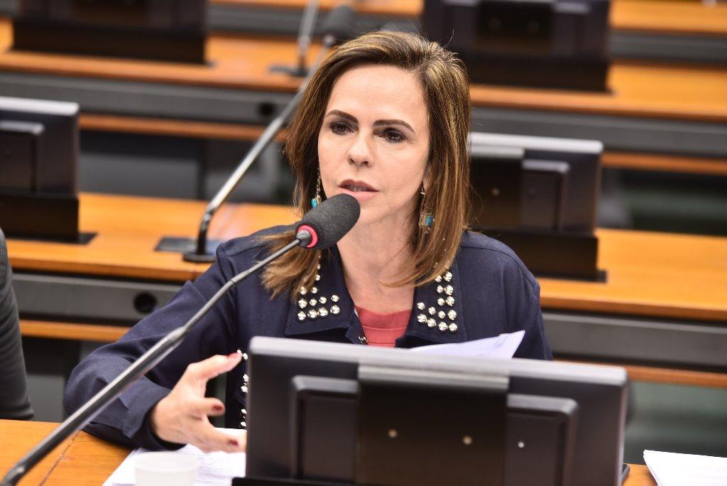Deputada Dorinha é designada relatora setorial do Orçamento 2018