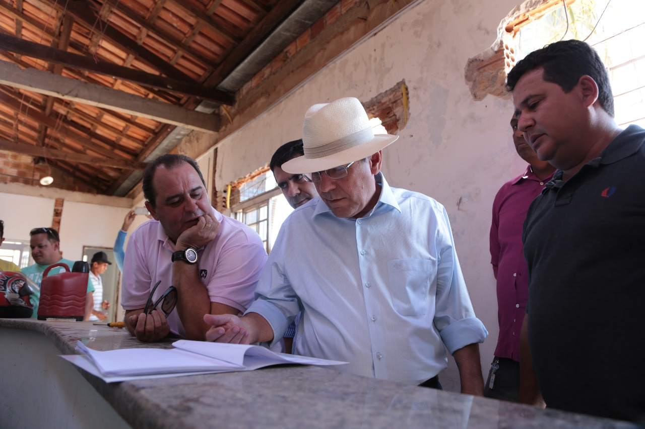 Araguaína terá centro gratuito para castração de cães e gatos