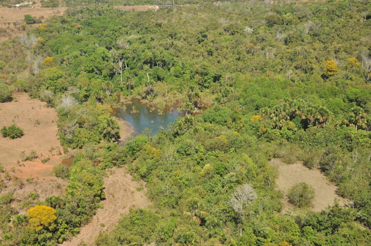 ISA seleciona, até o 21.10, projetos para iniciativa de preservação ambiental