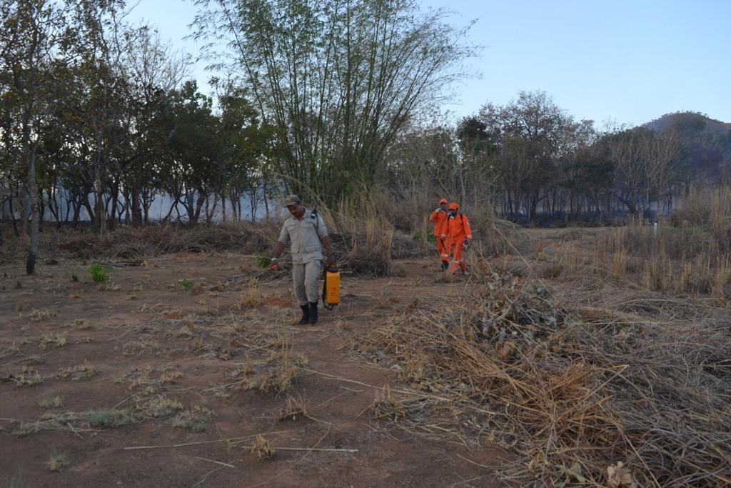 Bombeiros e brigadistas de Paraíso são acionados várias vezes por dia para conter fogo em áreas baldias