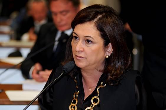 PMDB Nacional não suspendeu nem expulsou a senadora Kátia Abreu
