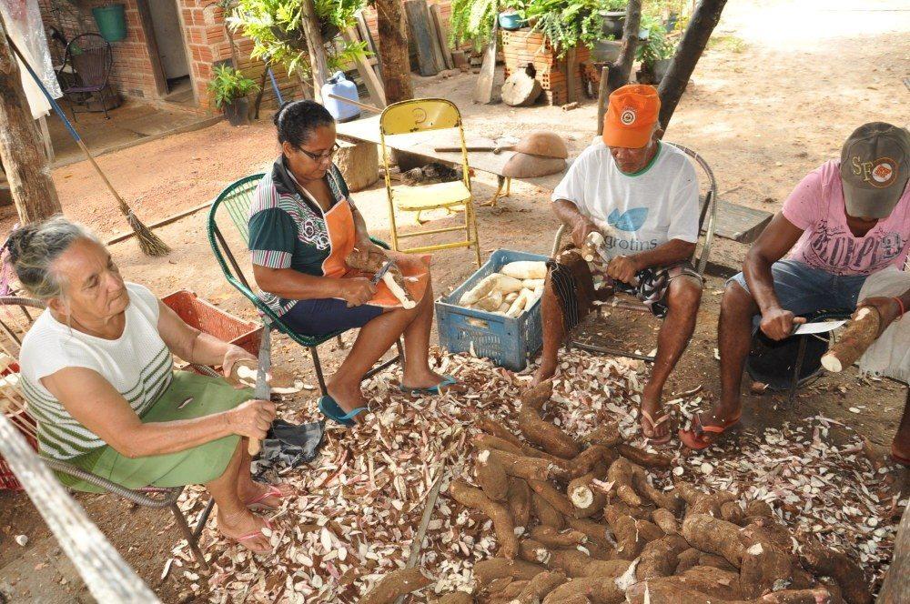 Agricultura Familiar no Tocantins tem reforço do Sebrae