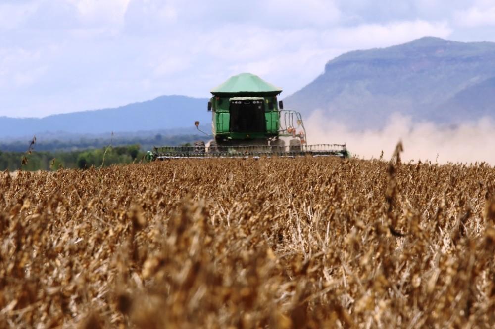 Supersafra faz Tocantins ter o maior volume de exportações já registrado