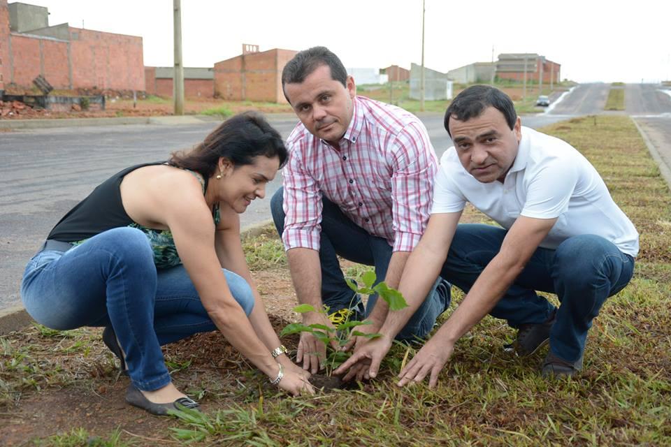 Prefeitura Paraíso realiza plantio de cerca de 100 mudas de árvores