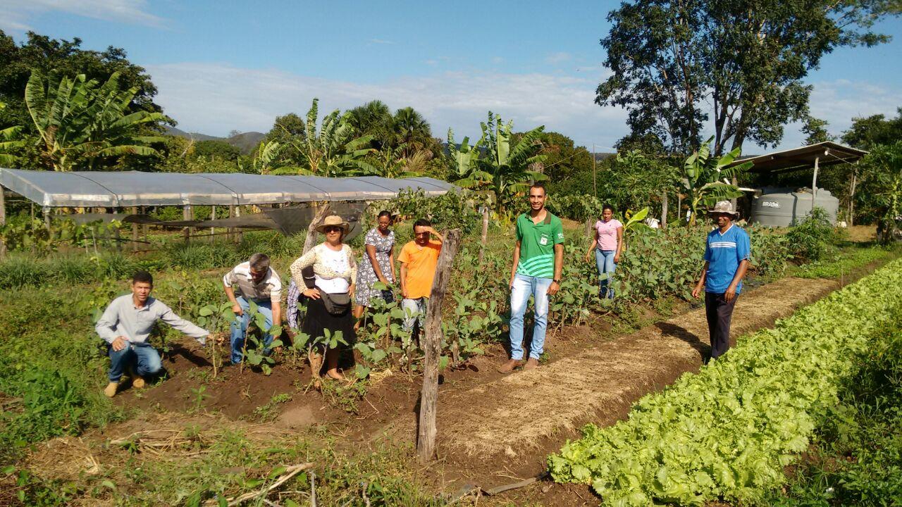 SENAR capacita produtores no curso de Trabalhador na Olericultura em Jaú do Tocantins