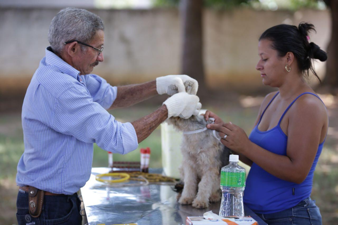CCZ de Gurupi realizou testes do calazar em cães nos Setores Vila Guaracy e Vila dos funcionários