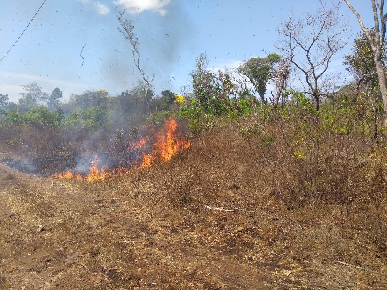 Homens são presos por causar incêndio na serra do Lajeado ao colocar fogo em entulho
