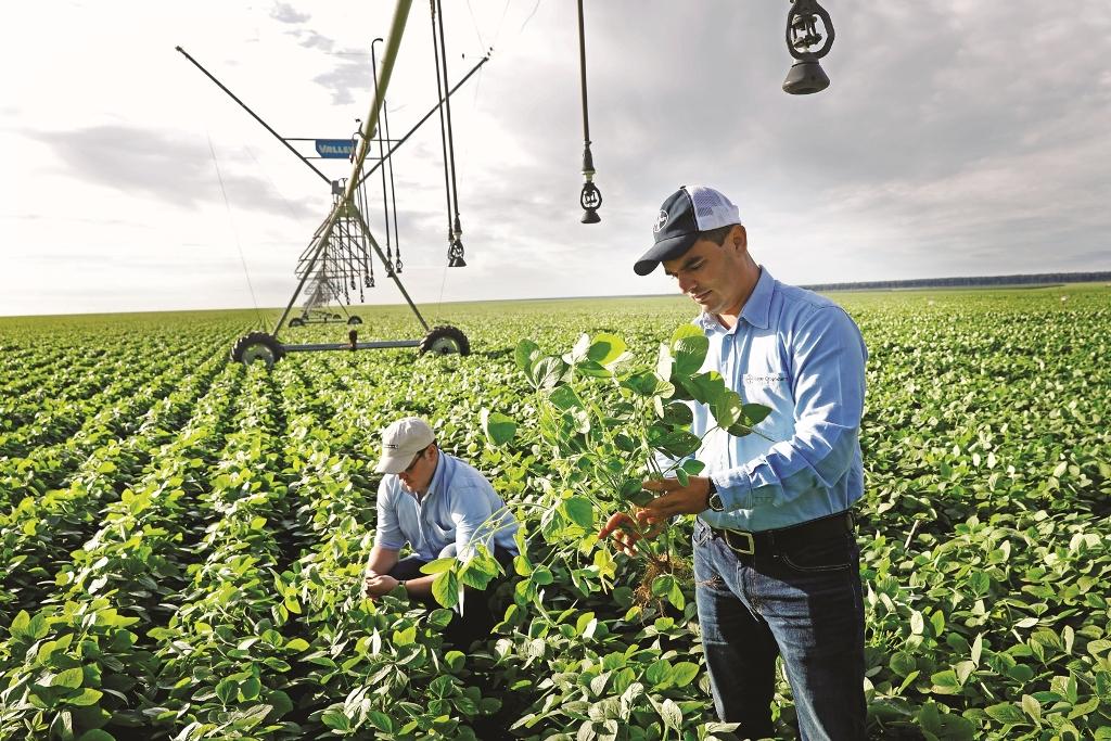 Bayer apresenta sua visão sobre o futuro da agricultura