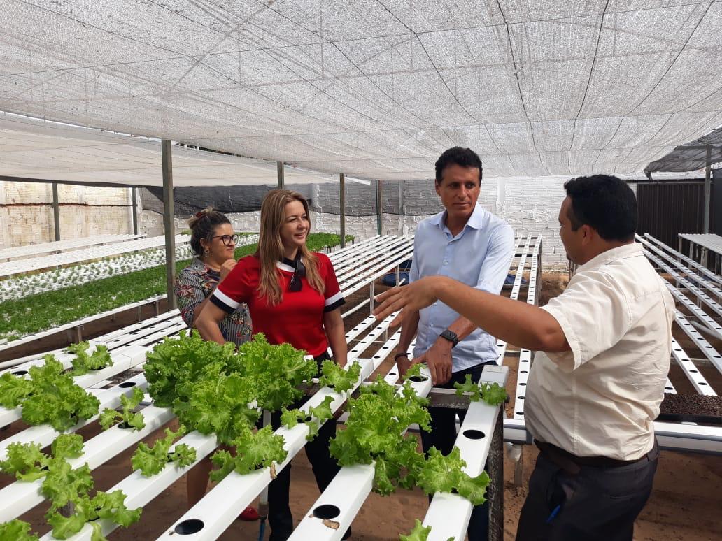 Nilton Franco destina emenda parlamentar para atender famílias vulneráveis de Miracema que trabalharão com hortaliças