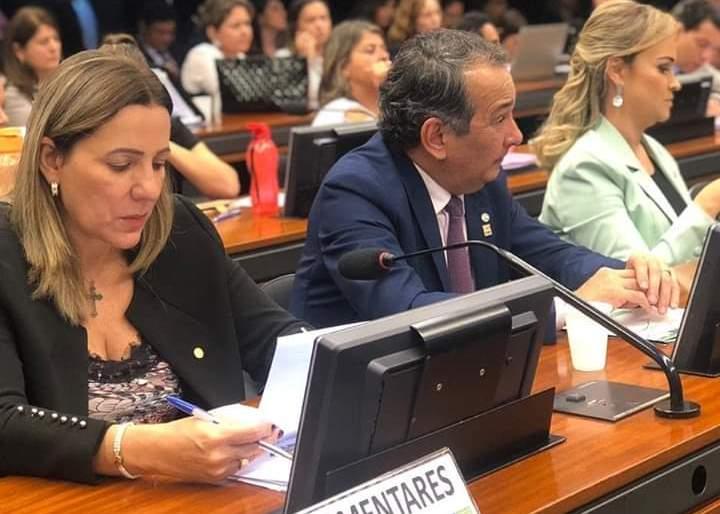 Dulce Miranda participa de reunião da CSSF com ministro Osmar Terra