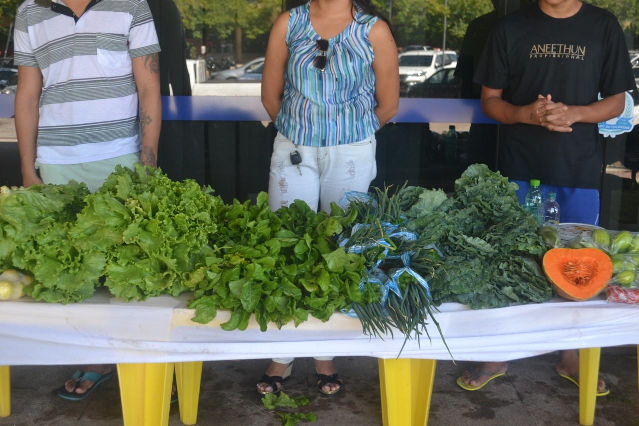 Cidadania e Justiça recebe feira de hortaliças realizada por adolescentes do Case