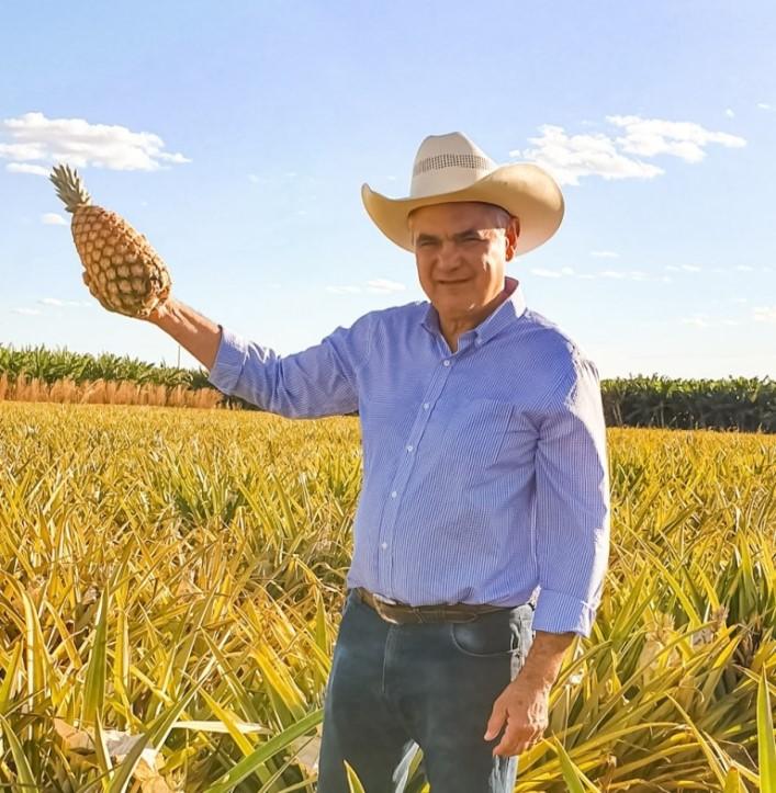 A importância econômica da fruticultura para o Tocantins