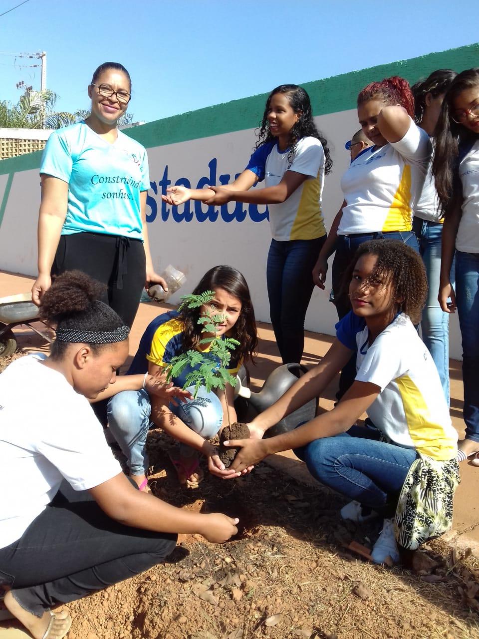 Tocantins: Escolas estaduais promovem conscientização ambiental no Dia da Árvore