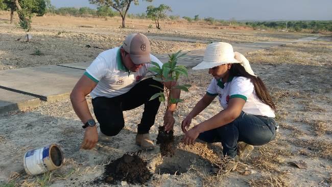 Prefeitura de Pium celebra Dia da Árvore com plantio de mudas no Parque das Nascentes