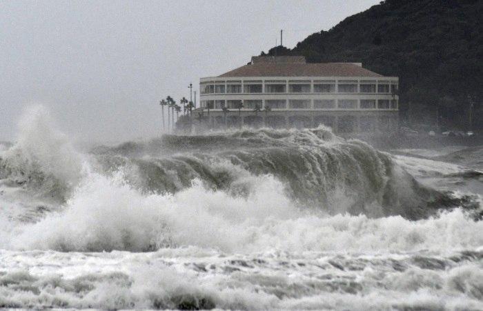 Tufão Faxai causa grandes prejuízos à agricultura do Japão