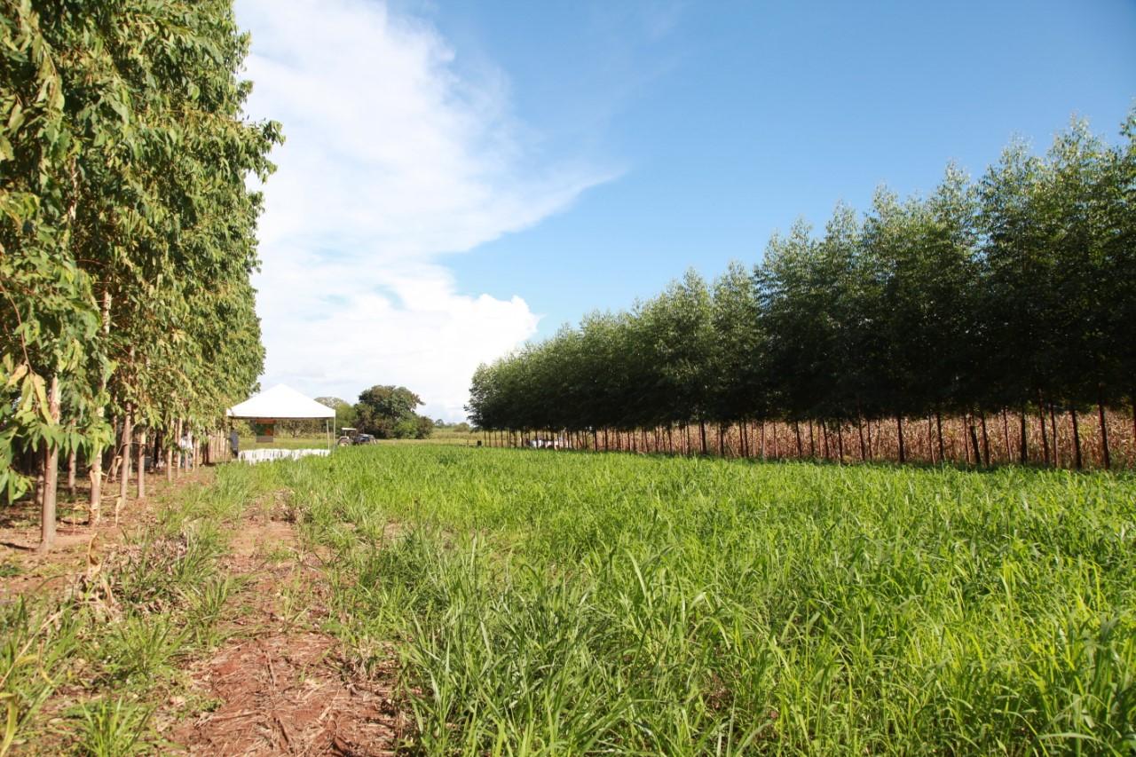 Estão abertas inscrições para seminário estadual de Agricultura de Baixa Emissão de Carbono