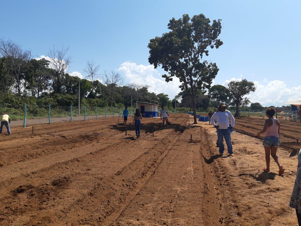 Famílias recebem canteiros para início do plantio de hortaliças na Horta Comunitária da Arso 131