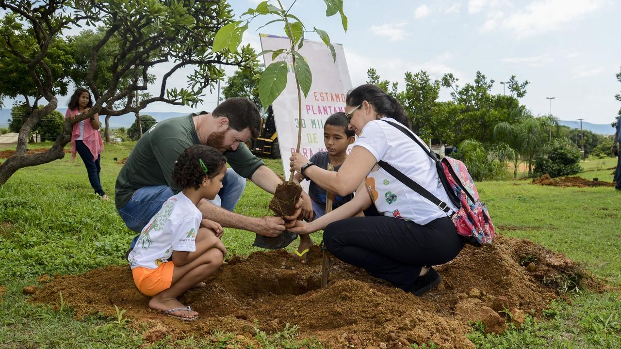 'MudaClima' dá primeiro passo para transformar jardim de praça em bosque no Vale do Sol