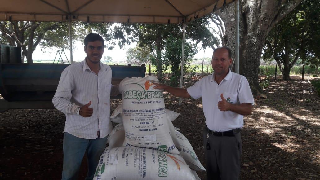 Unidade demonstrativa da cultura de arroz consorciado com as forrageiras é implantada em Peixe