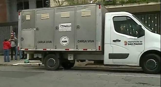 Pitbulls atrasam por quatro horas retirada de corpo de casa em SP