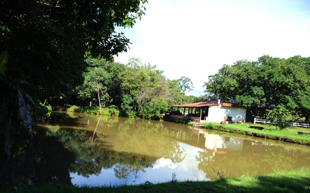 Unidade demonstrativa de piscicultura terá cultivo de pintado em tanque escavado