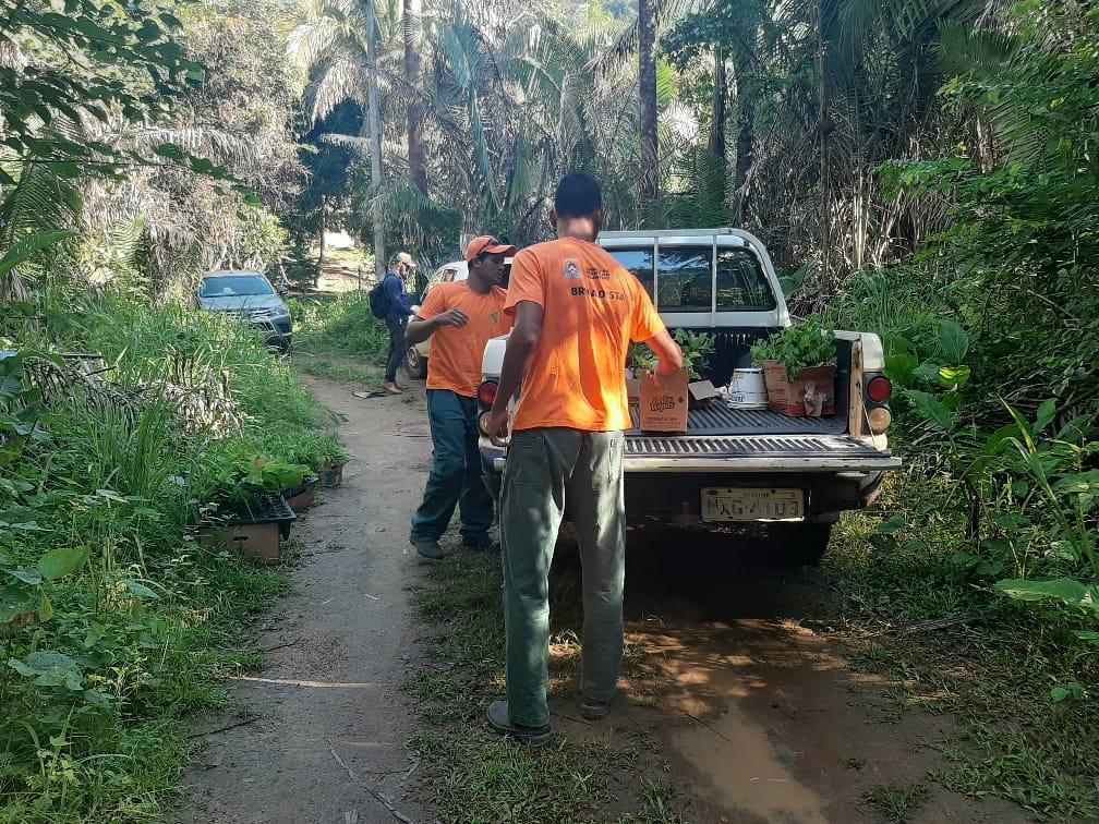 Parceria entre órgãos ambientais e chacareiros resulta em restauração de área degradada na Serra do Lajeado