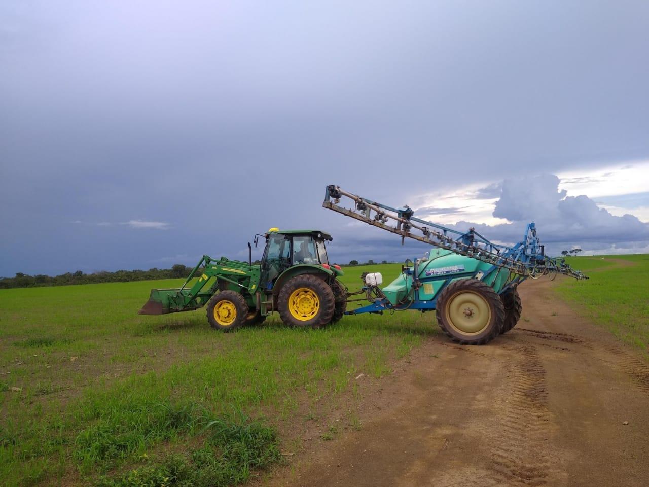 Agricultores apostam em tecnologia de plantio consorciado para conservação e recuperação de pastagem