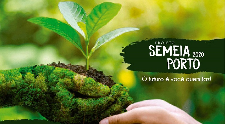 Para celebrar mês do Meio Ambiente, secretaria de Meio Ambiente de Porto Nacional distribui mudas de 17 espécies de plantas