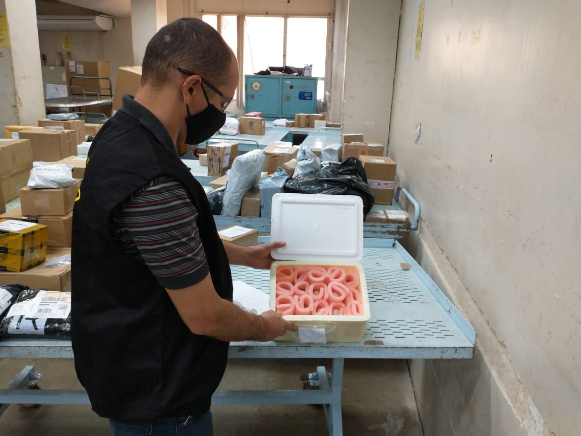 Adapec apreende em Palmas ovos férteis enviados de forma ilegal via correios