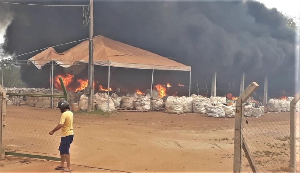 Fogo atinge cooperativa de reciclagem e área agrícola em Gurupi