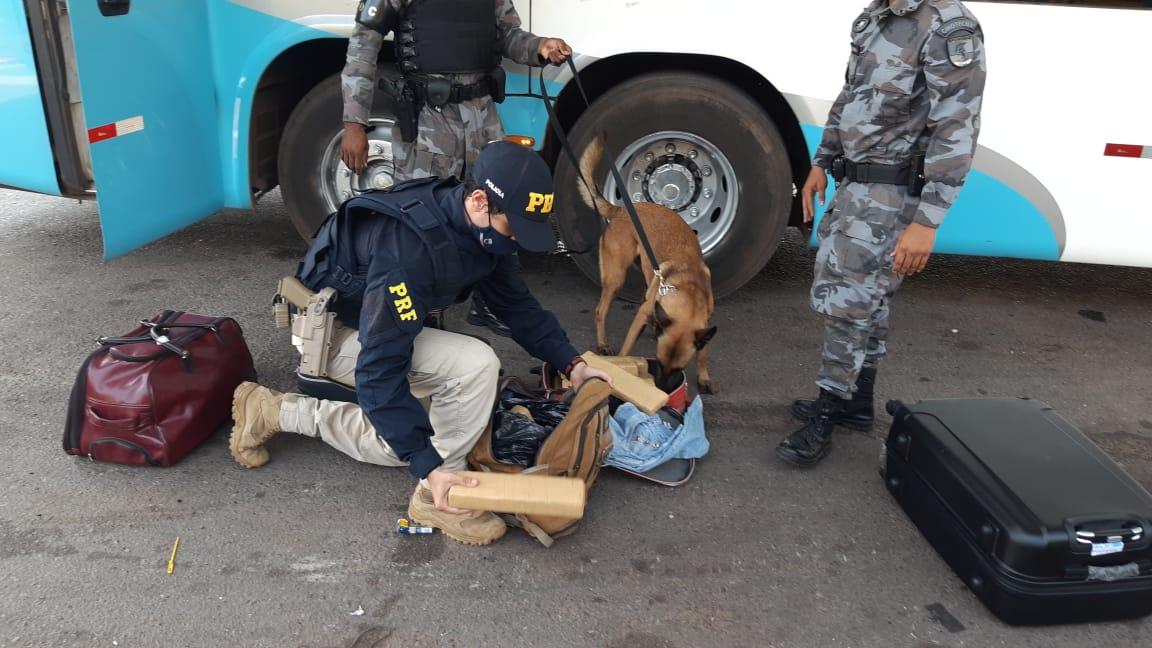 PRF e PM apreenderam 15 kg de maconha transportada em duas malas em Guaraí TO