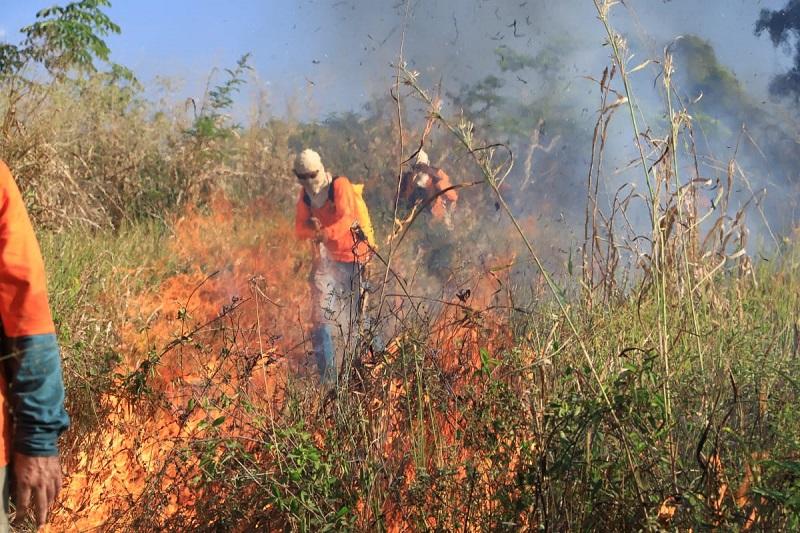 Brigadistas de Araguacema recebem treinamento sobre Manejo Integrado do Fogo