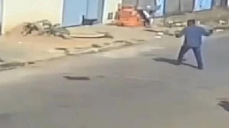Vídeo: homem mata cão com pedaço de concreto, no portão da residência do dono, em GO