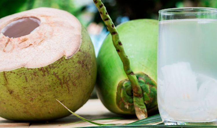 'Sexta do Pernambuco' leva água de coco grátis aos clientes da 40 Graus Moda Praia, em Paraíso