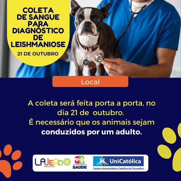 Prefeitura e UniCatólica realizam coleta de sangue gratuita em cães para diagnóstico de Calazar em Lajeado