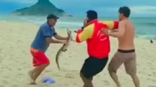 Homem usa jacaré como 'arma' durante briga em praia do RJ
