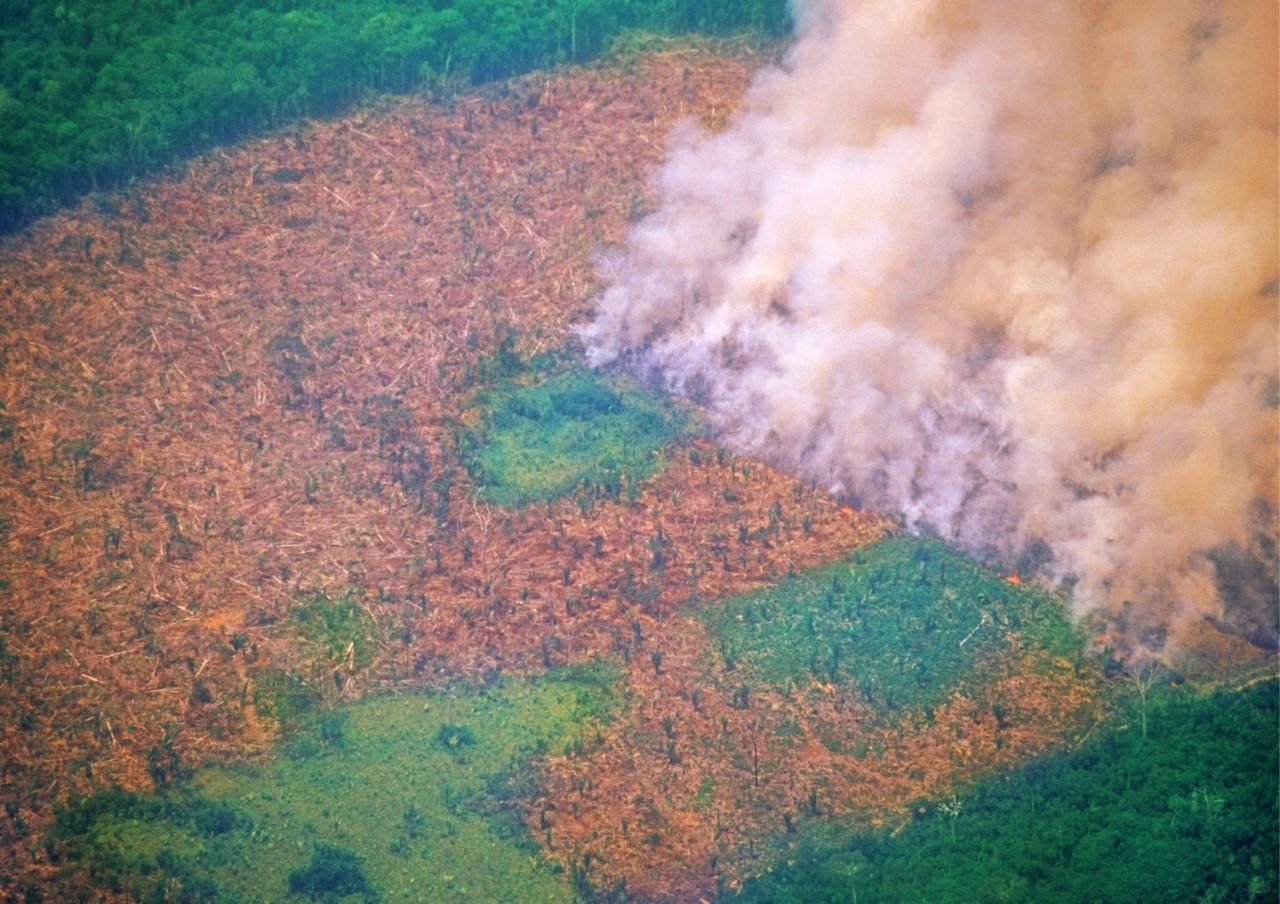Situação da Amazônia estará em debate no Congresso Brasileiro de Agronomia