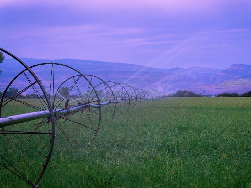 Akuna Matada Ranch at daylight
