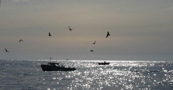Pêcheurs en mer des Lofoten, avril 2012