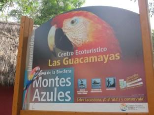 Centre éco-touristique Las Guacamayas, Génial, Chiapas
