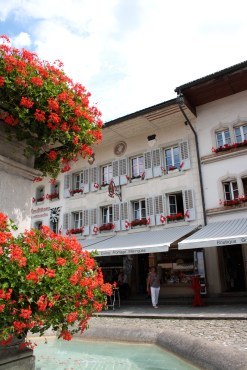 gruyere fountain geraniums