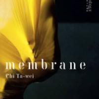 """Membrane"", Chi Ta-Wei"