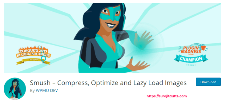 Smush best plugin for WordPress