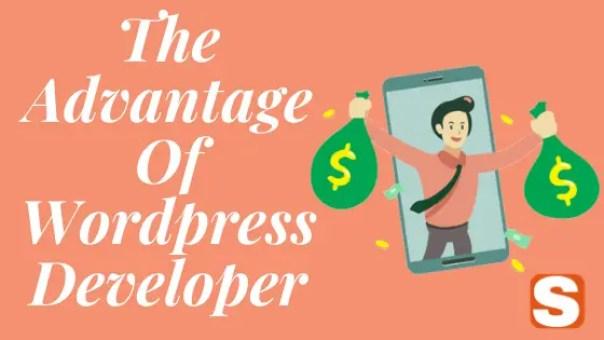 The Advantages Of WordPress Developer