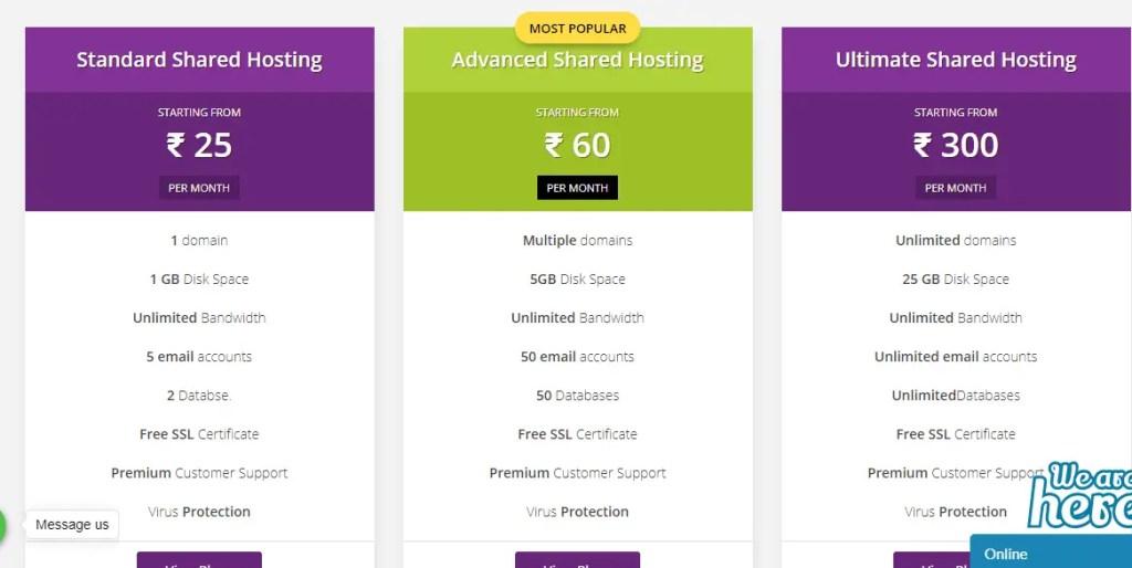 Bluegeek Web hosting services