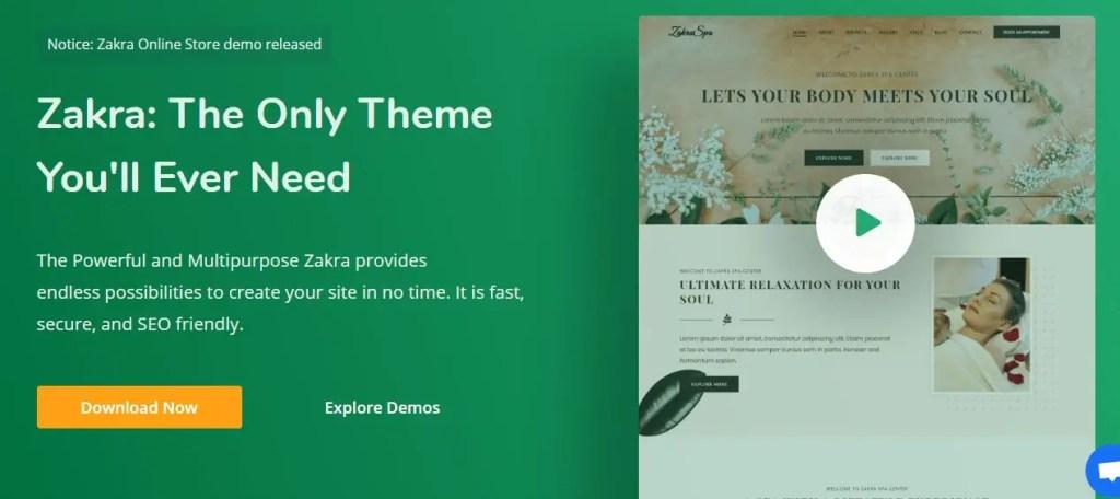 Top 11 Best WordPress Free Themes That Actually Make Joyful 1