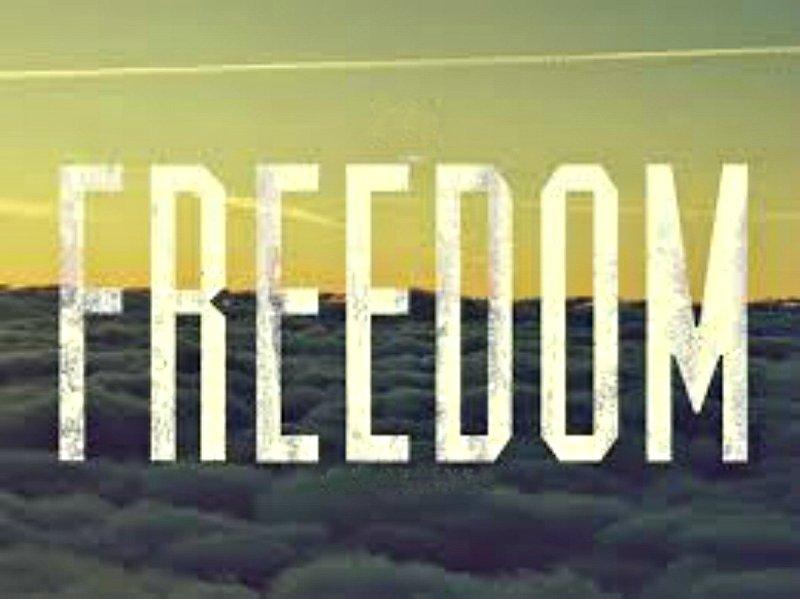 surprisinglives.net/childs-freedom-header/