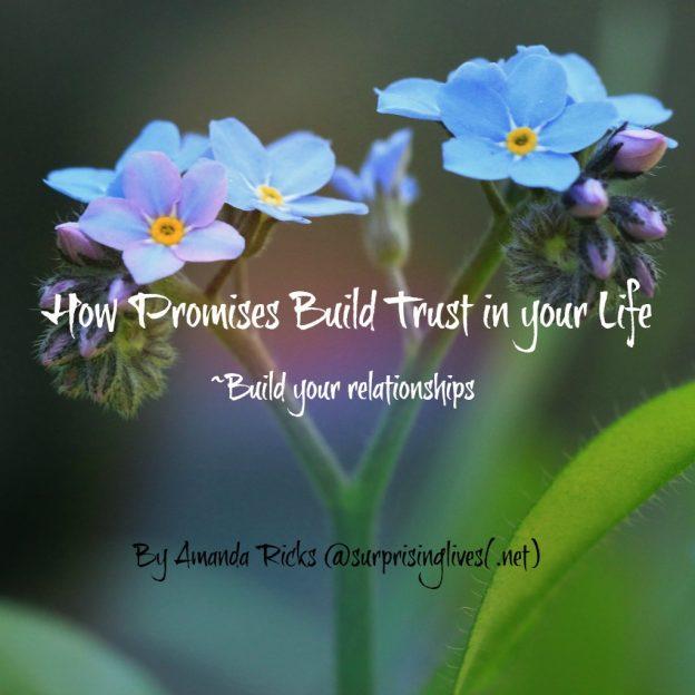 surprisinglives.net/how-promises-build-trust/